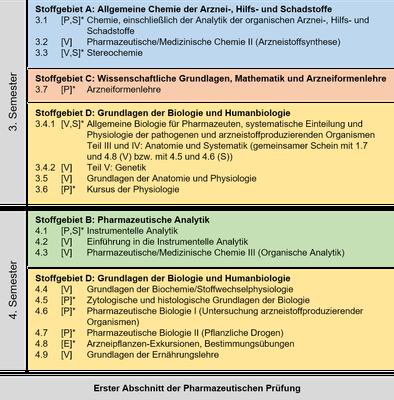 STEX_Aufbau_Jahr2_Alternativ.png — Institut für Pharmazeutische ...